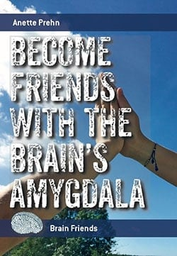 BECOME-FRIENDS-WITH-THE-BRAINS-AMYGDALA